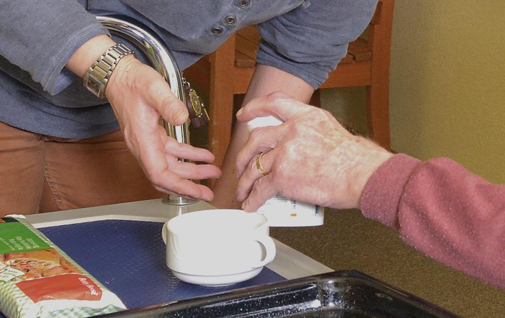 PWG Hoefli Dienstleistung Betreuung von aelteren demenzkranken Leuten